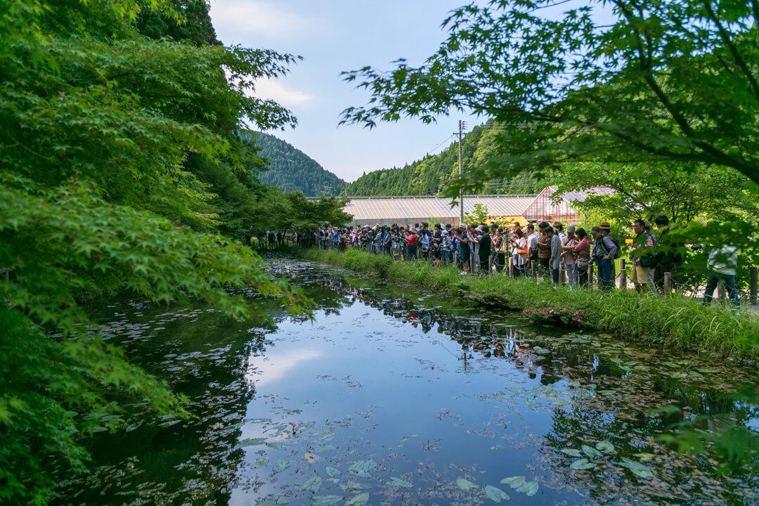 モネの池を撮影する人々を撮影した写真
