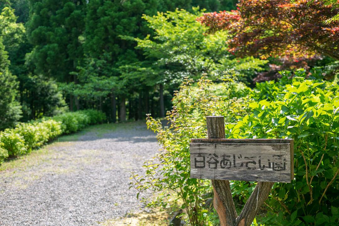 白谷あじさい園の看板の写真