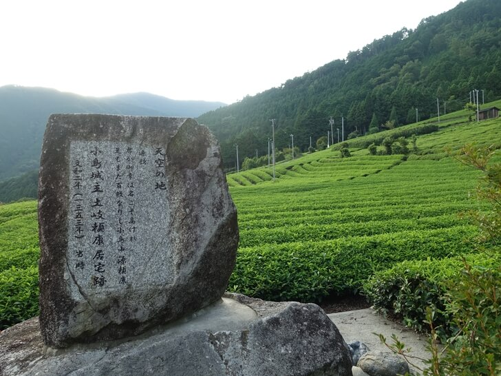 天空の茶畑を地上から眺めた写真その3