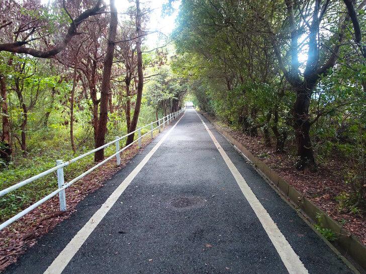 SEAHOUSEへ向かう道中の写真