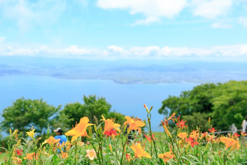 びわ湖テラスからの眺め花と絡めて撮影した写真