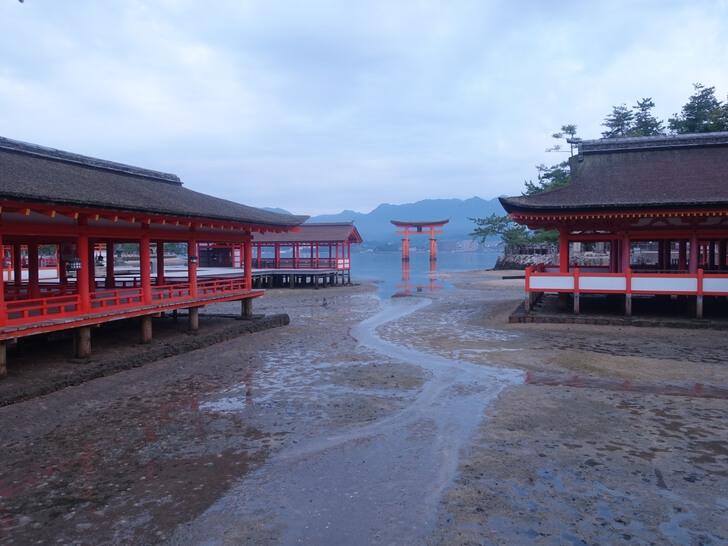 厳島神社の参拝中の写真その2