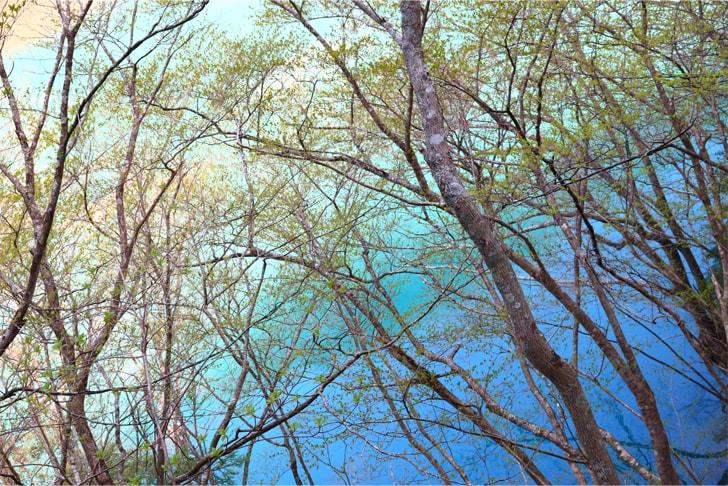 グラデーションが美しい湖面を撮影した写真