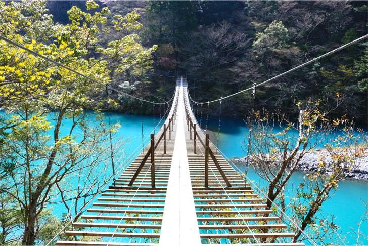夢の吊橋の写真
