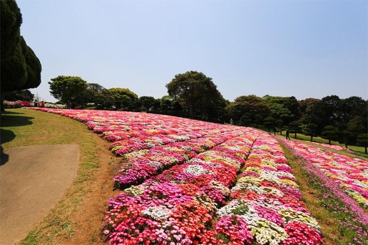 能古島の写真