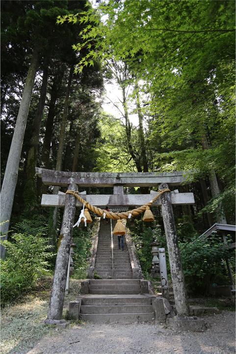 根道神社の鳥居の写真