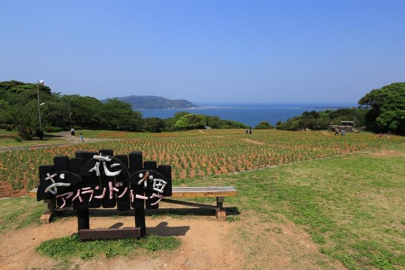能古島アイランドパーク・ポピーの写真