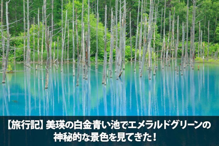 【旅行記】美瑛の「青い池」でエメラルドグリーンの神秘的な景色を見てきた!