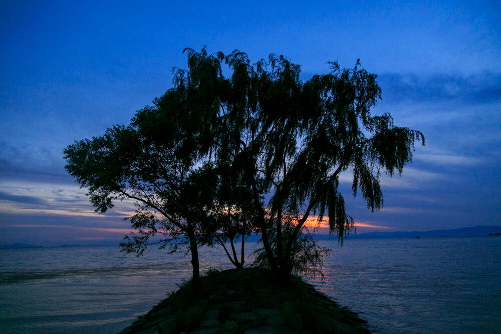 豊公園の夕焼けの写真