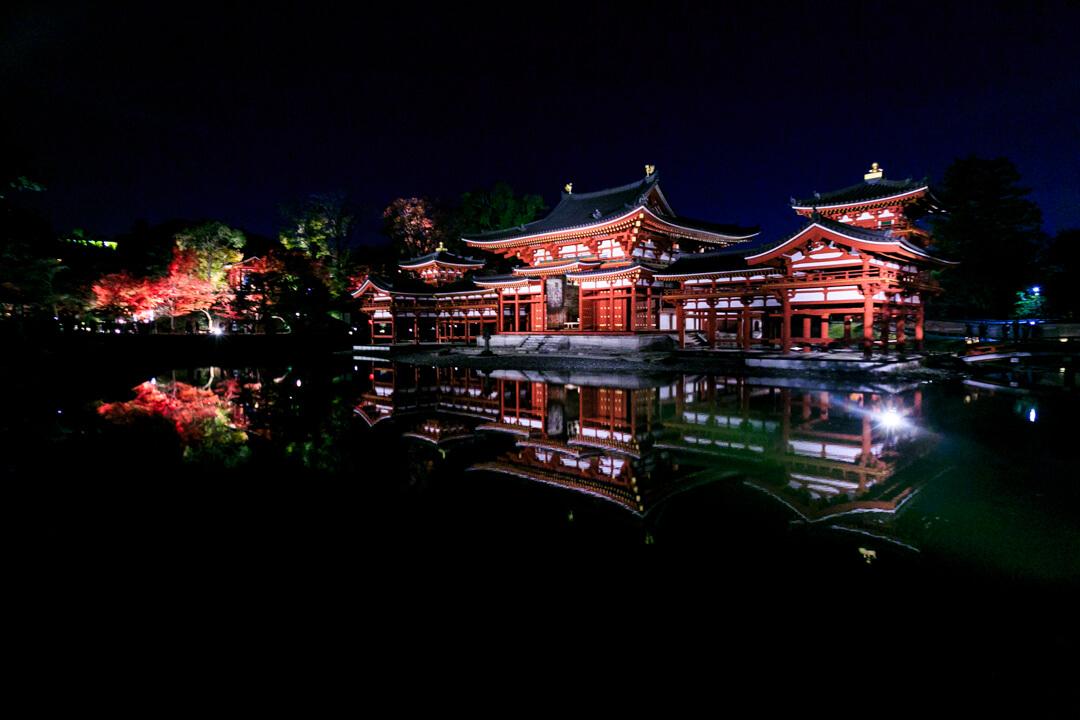 夜間特別拝観でライトアップされた平等院鳳凰堂を横から撮影した写真