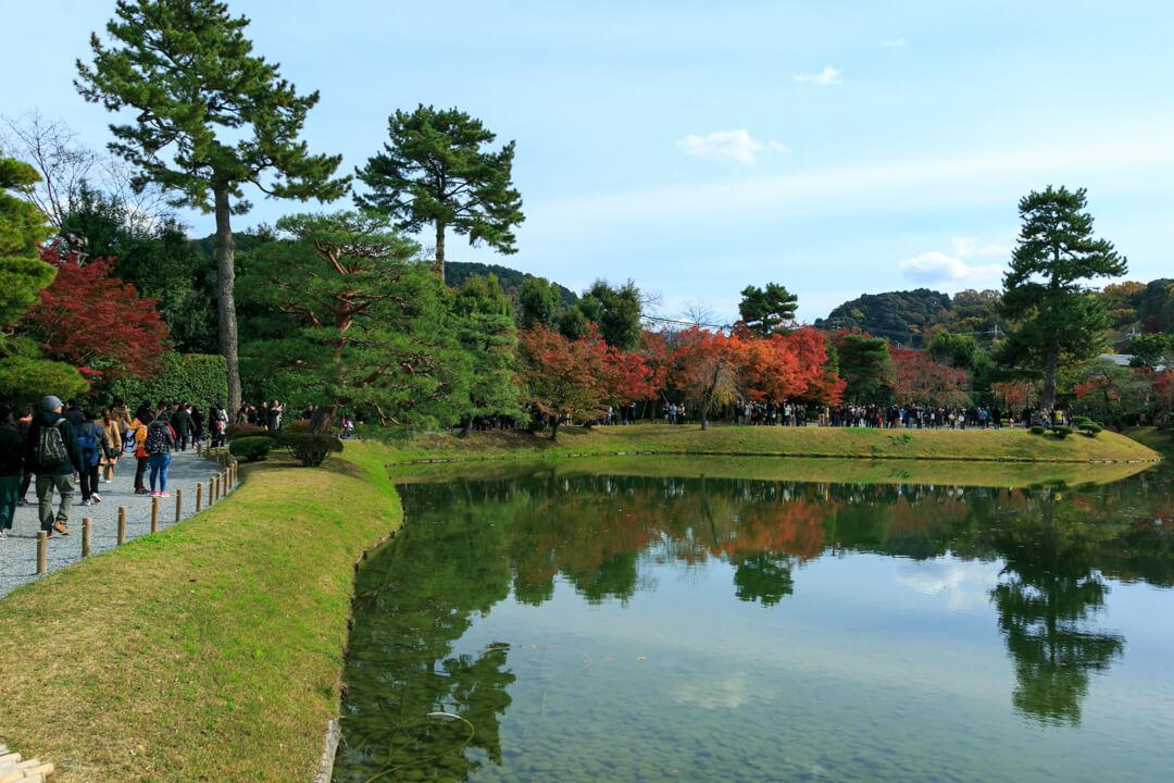平等院鳳凰堂の池の周囲の様子を撮影した写真