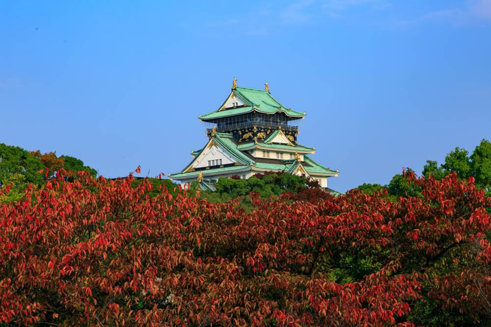 玉造口から撮影した大阪城と紅葉の写真