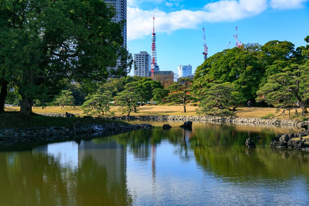 浜離宮庭園から撮影した東京タワーの写真
