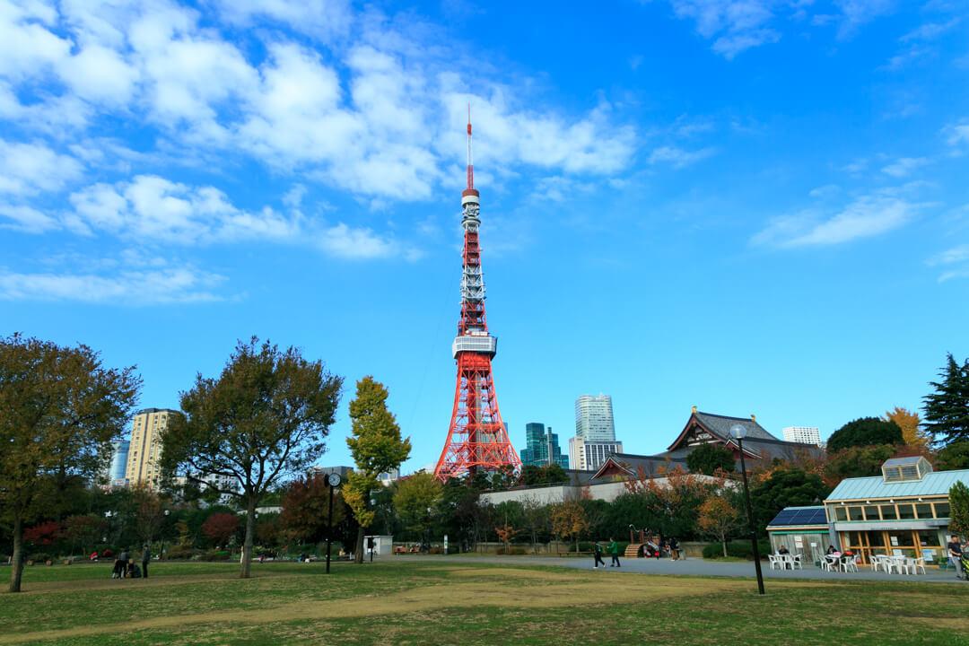 芝公園1号地から撮影した東京タワーの写真