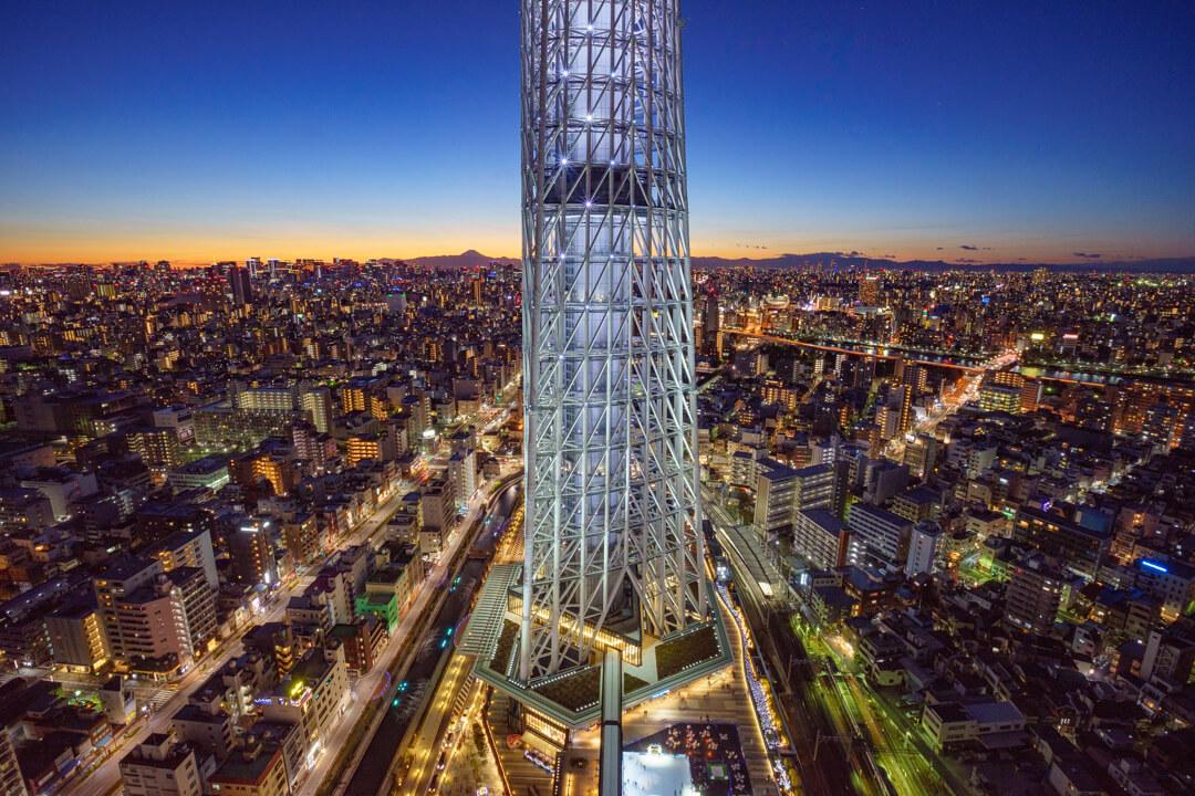 イーストタワーから撮影した東京スカイツリーの写真