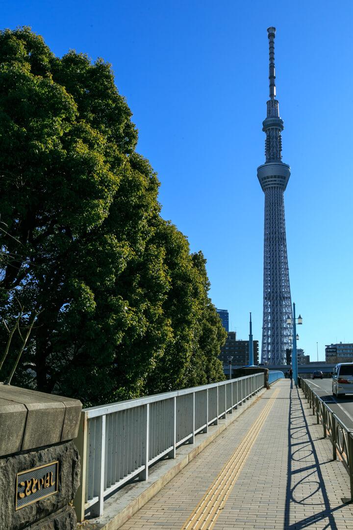言問橋西詰から撮影した東京スカイツリーの写真