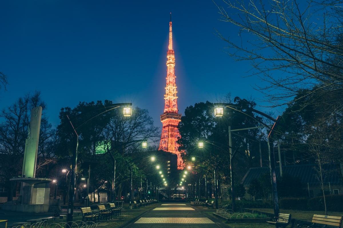 芝公園4号地から撮影した東京タワーの写真
