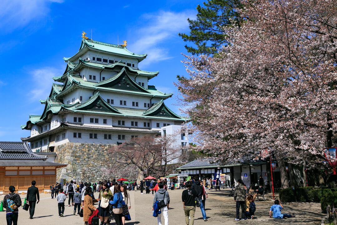 清正石の付近から撮影した名古屋城の写真