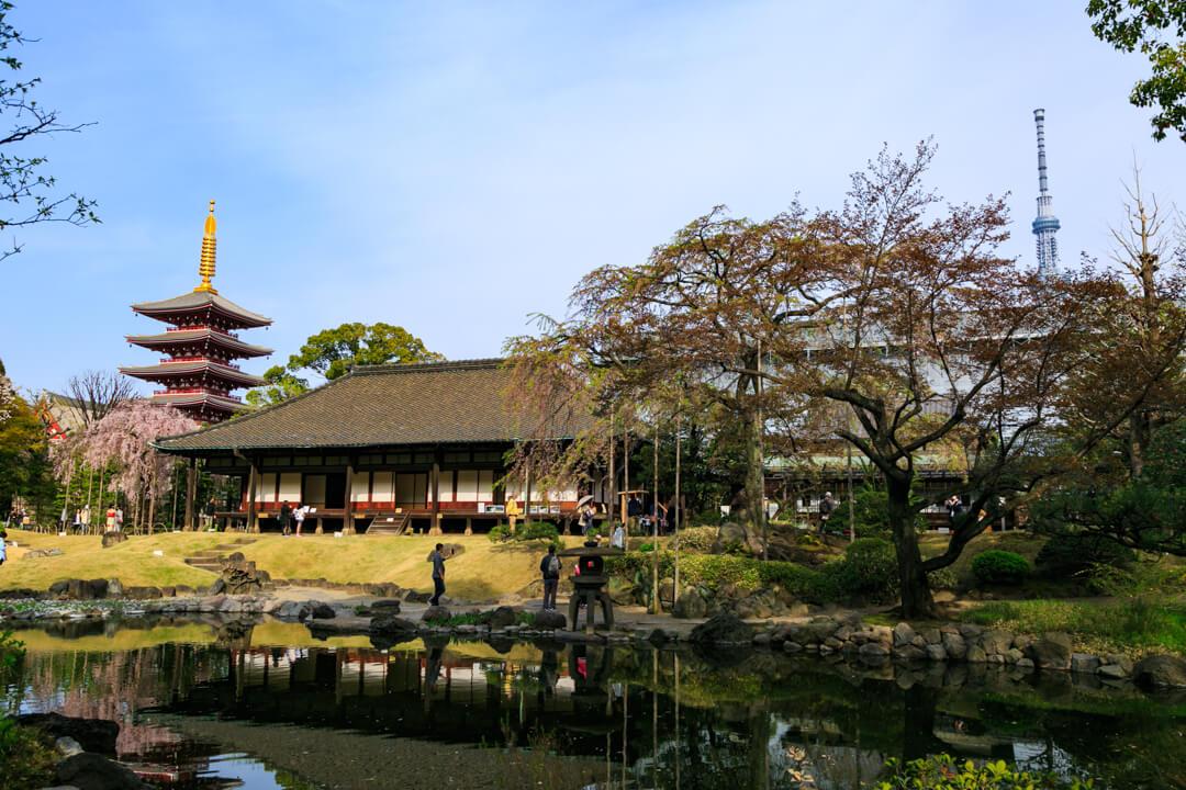 伝法院庭園から五重の塔と東京スカイツリーを撮影した写真
