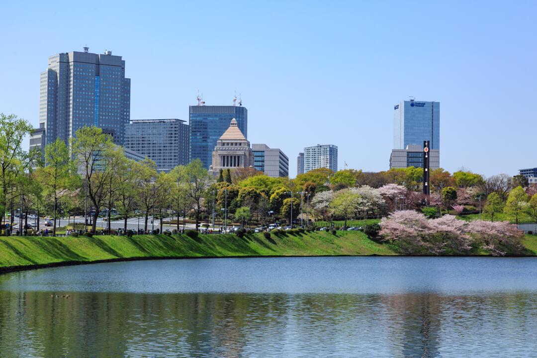 桜と国会議事堂の写真