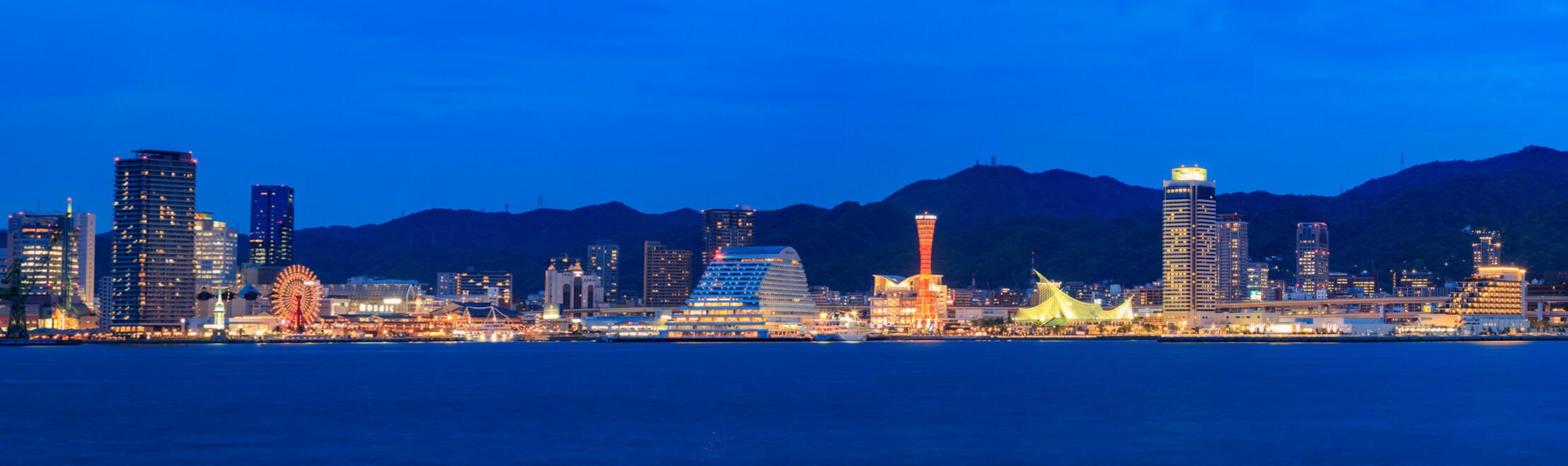 ポートアイランド北公園から撮影した神戸港の夜景