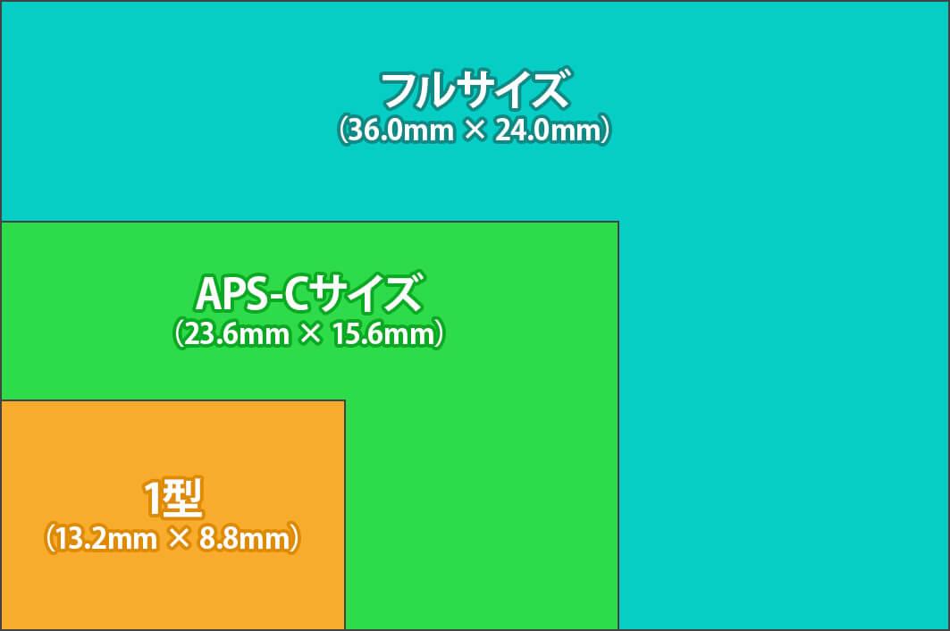 イメージセンサーの大きさを比較したイラスト