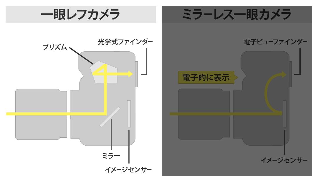 一眼レフカメラの構造のイラスト