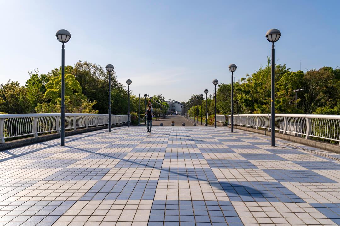 りんくう公園へ続く遊歩道の写真