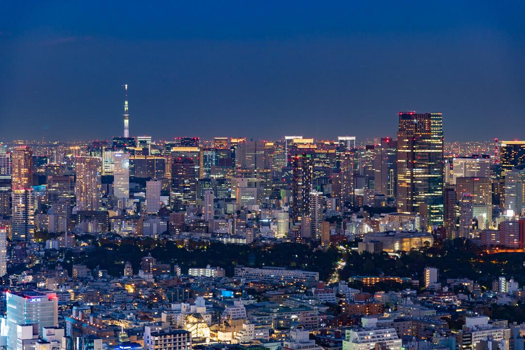 渋谷スクランブルスクエア展望台・渋谷スカイから撮影するライトアップされたスカイツリー