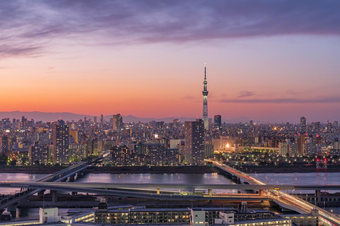 タワーホール船堀展望台から撮影した東京スカイツリーの写真