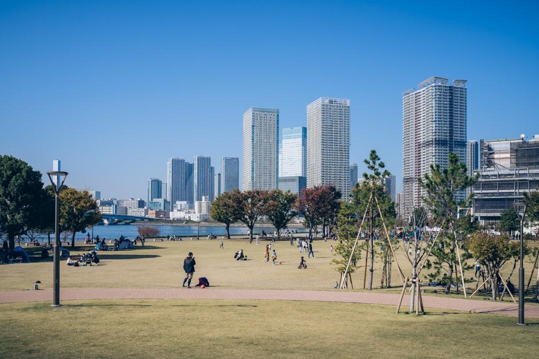 豊洲公園から撮影した湾岸エリアの景色